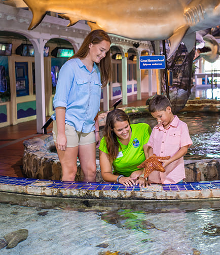 Kids touring the aquarium with guide